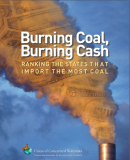 burningcoal-burningcash_coversnapshot