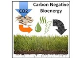 carbon_negative_graphic