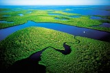 everglades_beautiful